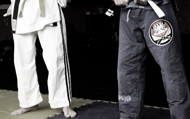 brazilian-jujitsu-mestre-2
